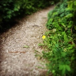 Lancaster Walk