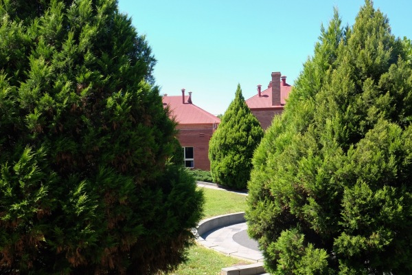 Bendigo Art Gallery Grounds